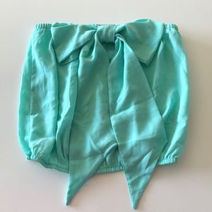 Boutique Tops - Penelope Mint Green Fully Sheer Crop Top
